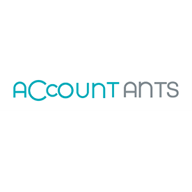 - Accountants -